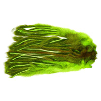 Pine Squirrel Skin Zonked - Fluorescent Chartreuse