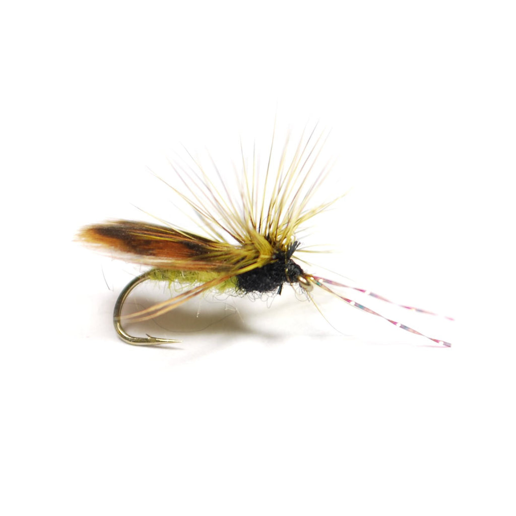 Quigley's Hen Wing Caddis