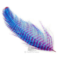 Barred Rhea Feathers - Pacific Fly Fishers