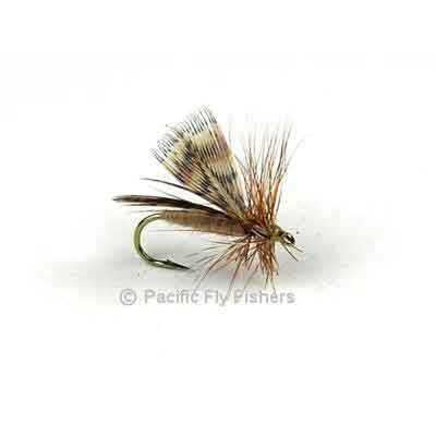 Spent Partridge Caddis - Tan