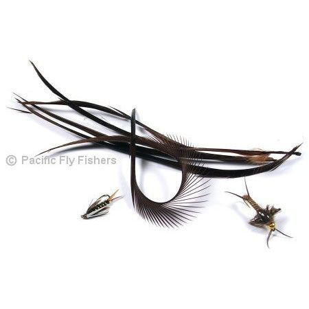 Stripped Goose Biots - Pacific Fly Fishers