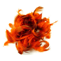 Teal Flank Feathers - Orange