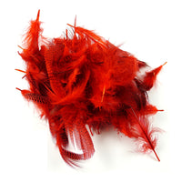 Teal Flank Feathers - Red