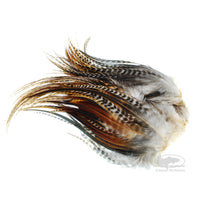 Whiting Bugger Packs - Barred Dark Ginger - Fly Tying Hackle