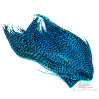 Whiting Bugger Packs - Kingfisher Blue Grizzly