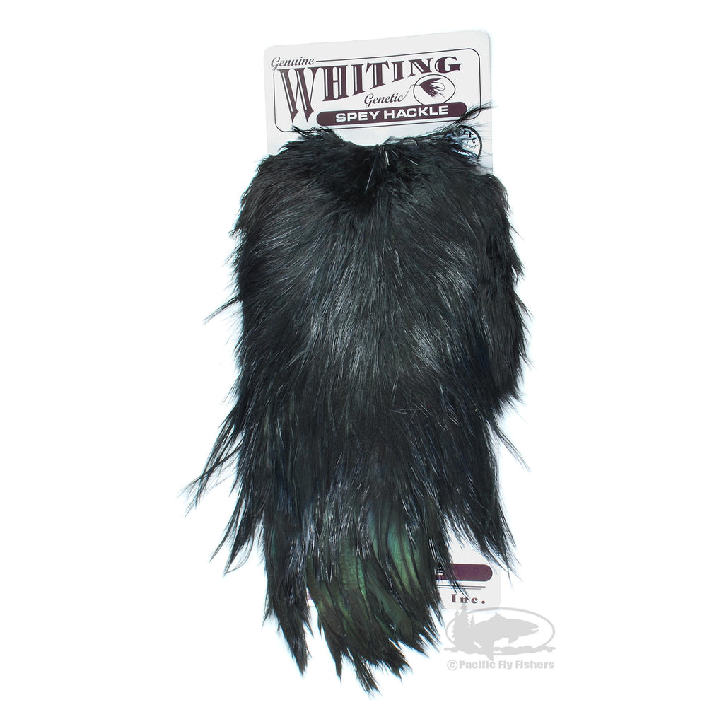 Whiting Genetic Spey Hackle - Black - Heron Substitute Spey Feathers