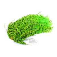 Whiting Streamer/Deceiver Packs - Grizzly Fl. Green Chartreuse