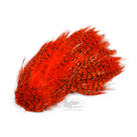 Whiting Streamer/Deceiver Packs - Grizzly Orange