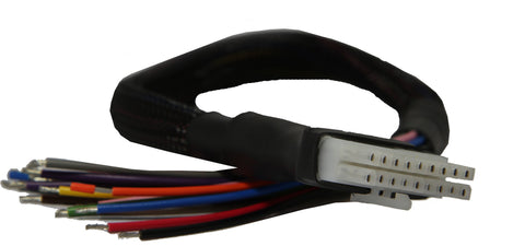 Replacement Wiring Loom for Raptor ROAD or RACE