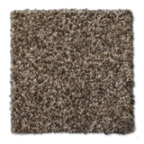 Buckwold Carpet Native - per SqFt Elemental - Carpet