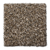 Buckwold Carpet Necessary - per SqFt Elemental - Carpet
