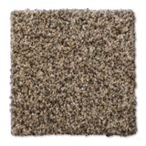 Buckwold Carpet Powerhouse - per SqFt Elemental - Carpet