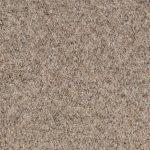 Shnier Carpet 5463 White Pepper - per SqFt Charleston - Carpet