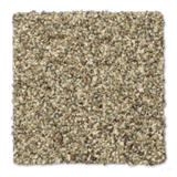 Buckwold Carpet Reed - per SqFt Bleeker Street - Carpet