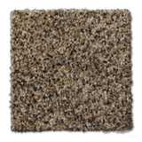 Buckwold Carpet Radical - per SqFt Elemental - Carpet