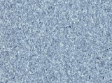 Buckwold Luxury Vinyl 6 ft. x up to 82.5 ft. x 0.080 in. / Byron Blue - per SqFt Accolade Plus - LVT
