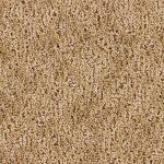 Shnier Carpet 3584 Drift Scape - per SqFt Westchester - Carpet