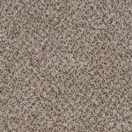 Shnier Carpet 5451 Cream Latte - per SqFt Charleston - Carpet