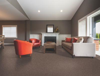 Regina Hardwood Flooring Center Carpet Carpet - per SqFt True Harmony - Carpet