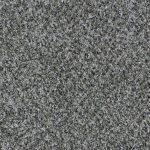 Shnier Carpet 5453 Cookies n Cream - per SqFt Charleston - Carpet