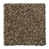 Buckwold Carpet Central - per SqFt Elemental - Carpet