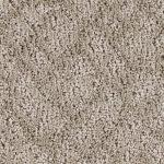 Shnier Carpet 3538 Granite - per SqFt Westchester - Carpet