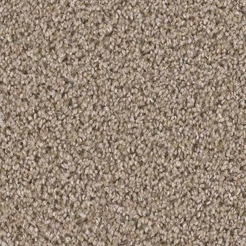 Regina Hardwood Flooring Center Carpet 12' Wide / Carpet - per SqFt SP60 (F) - Carpet