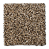 Buckwold Carpet Composing - per SqFt Elemental - Carpet