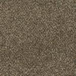 Shnier Carpet 5450 Frosted Cappuccino - per SqFt Charleston - Carpet