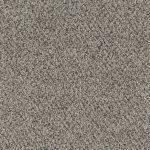 Shnier Carpet 5425 Honey Cream - per SqFt Charleston - Carpet