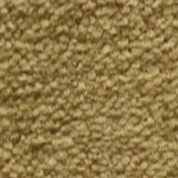 Shnier Carpet 6155 BEIGE - per SqFt Matchmates - Carpet