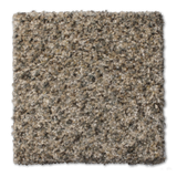 Buckwold Carpet Genuine - per SqFt Elemental - Carpet