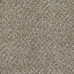 Shnier Carpet 5461 Iced Coffee - per SqFt Charleston - Carpet