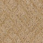 Shnier Carpet 4583 Sandstone - per SqFt Westchester - Carpet