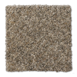 Buckwold Carpet Indwelling - per SqFt Elemental - Carpet