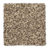 Buckwold Carpet Epic - per SqFt Bleeker Street - Carpet