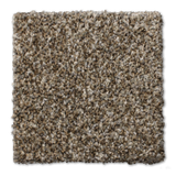 Buckwold Carpet Ingrained - per SqFt Elemental - Carpet