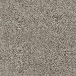 Shnier Carpet 5502 Nougat Delight - per SqFt Charleston - Carpet