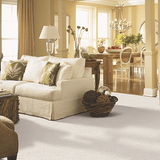 Mohawk Carpet Gentle Approach - Capet