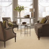 Mohawk Carpet Refined Moment - Carpet