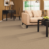 Mohawk Carpet Soothing Effect - Carpet