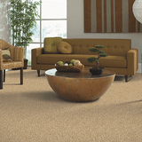 Mohawk Carpet Serene Selection - Carpet