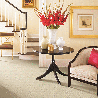 Mohawk Carpet Enduring Qualities - Carpet