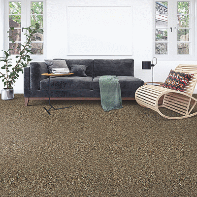 Mohawk Carpet Soft Intrigue I - Carpet
