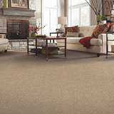 Mohawk Carpet Tender Moment - Carpet