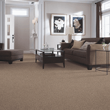 Mohawk Carpet Matchless I - Carpet