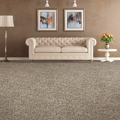 Mohawk Carpet Soft Distinction I - Carpet