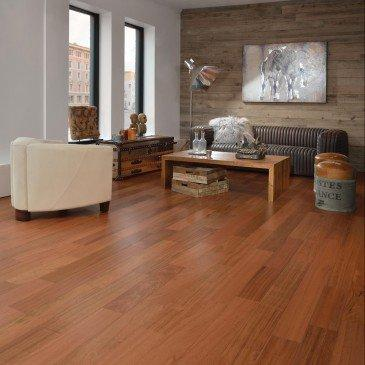 Mirage Hardwood Exotic Brazilian Cherry - Hardwood