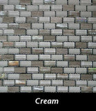 Cream Reef Mosaic Tile, Backsplash Tile, Wall Tile and Accent Tile 5/8x 1-1/4