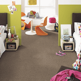 Regina Hardwood Flooring Center Carpet 12' Wide / Carpet / Pad / Installation Premier Look - Carpet